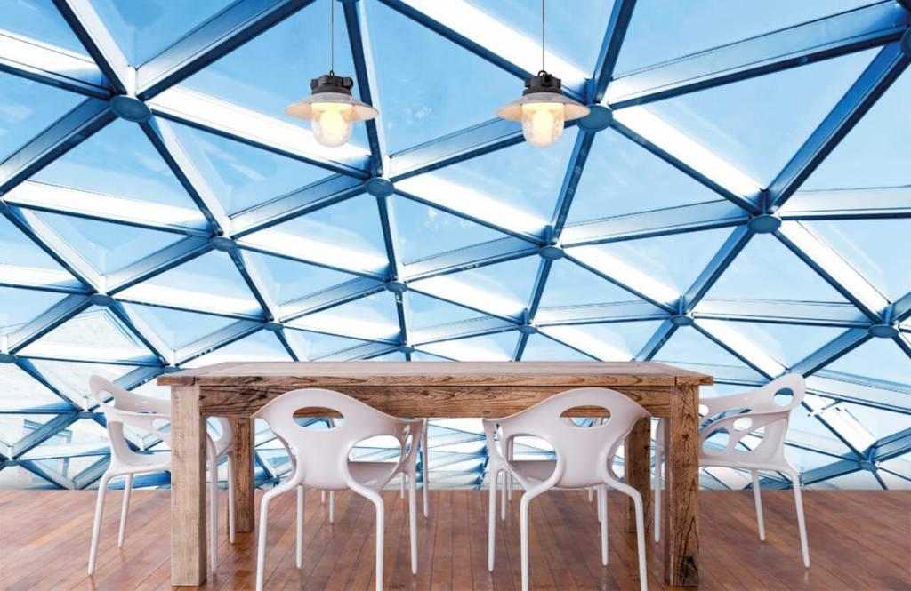 Buildings - Glass ceiling - Entrance 6