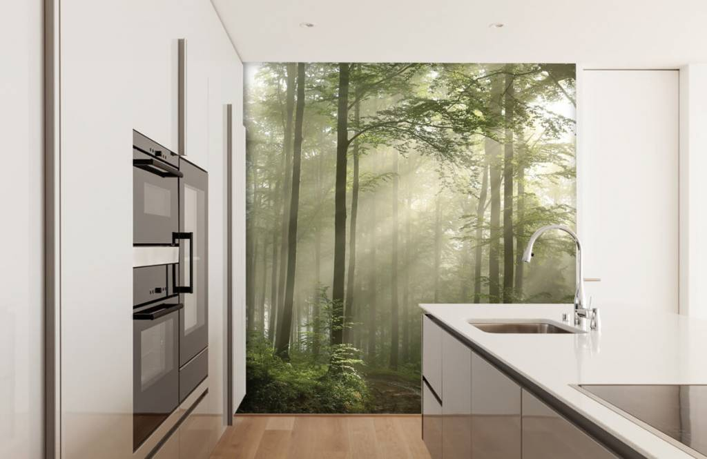 Forest wallpaper - Green forest in the fog - Bedroom 3
