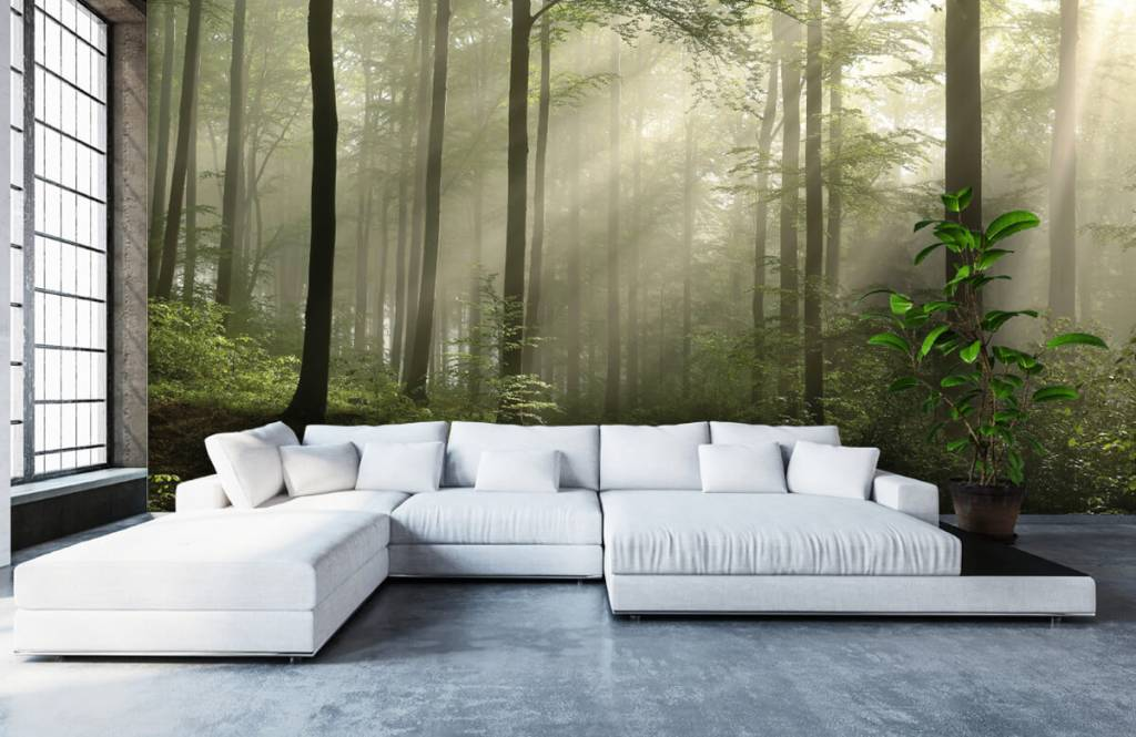 Forest wallpaper - Green forest in the fog - Bedroom 5