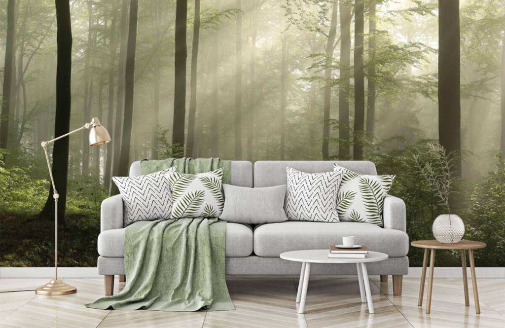 Forest wallpaper - Green forest in the fog - Bedroom 7