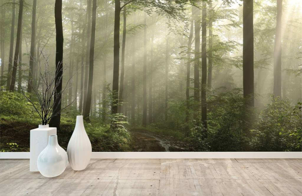 Forest wallpaper - Green forest in the fog - Bedroom 8