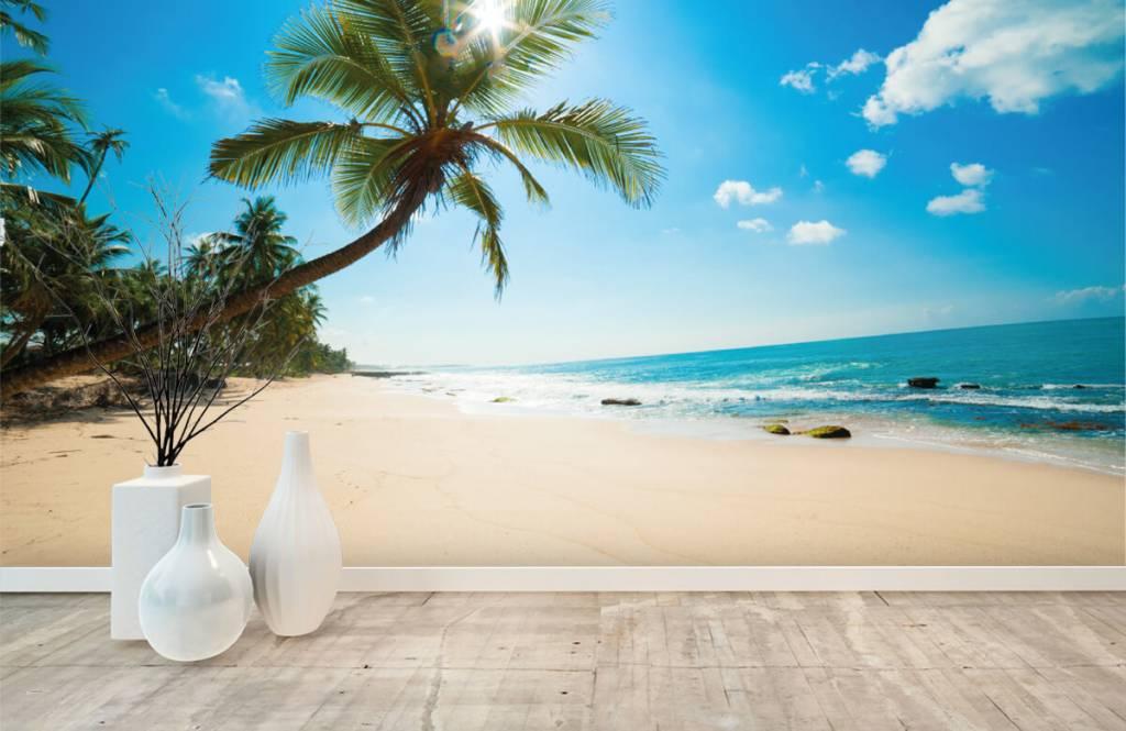 Palmtrees - Large palm tree - Bedroom 8