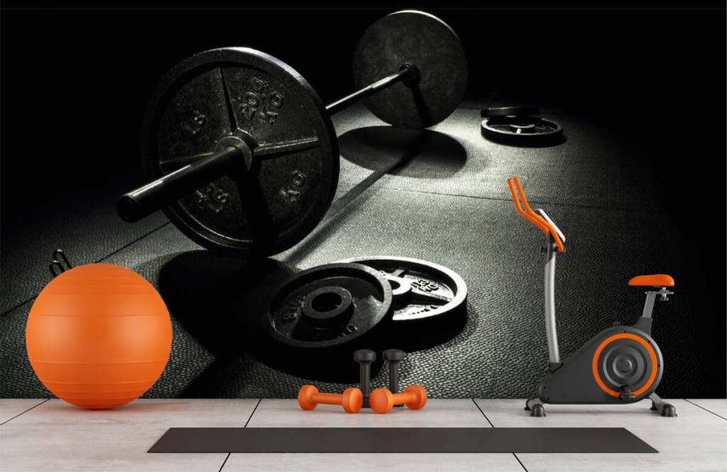 Fitness - Weight dumbbell - Hobby room 1