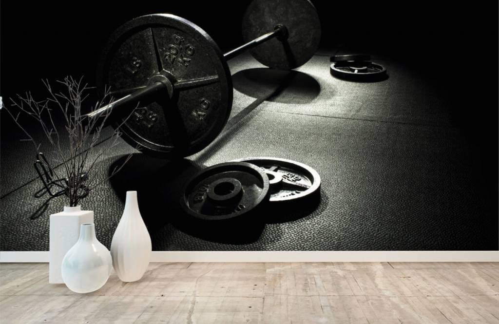 Fitness - Weight dumbbell - Hobby room 3
