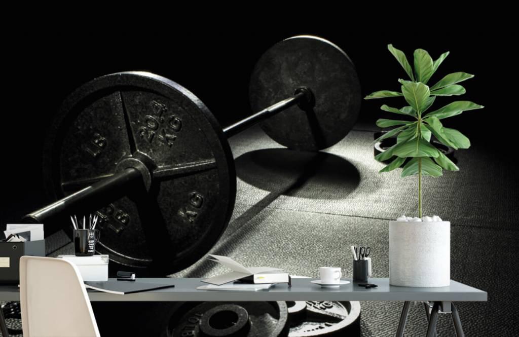 Fitness - Weight dumbbell - Hobby room 5