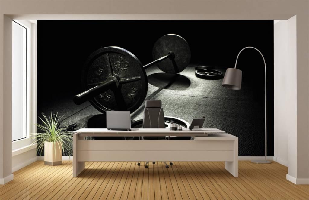 Fitness - Weight dumbbell - Hobby room 7