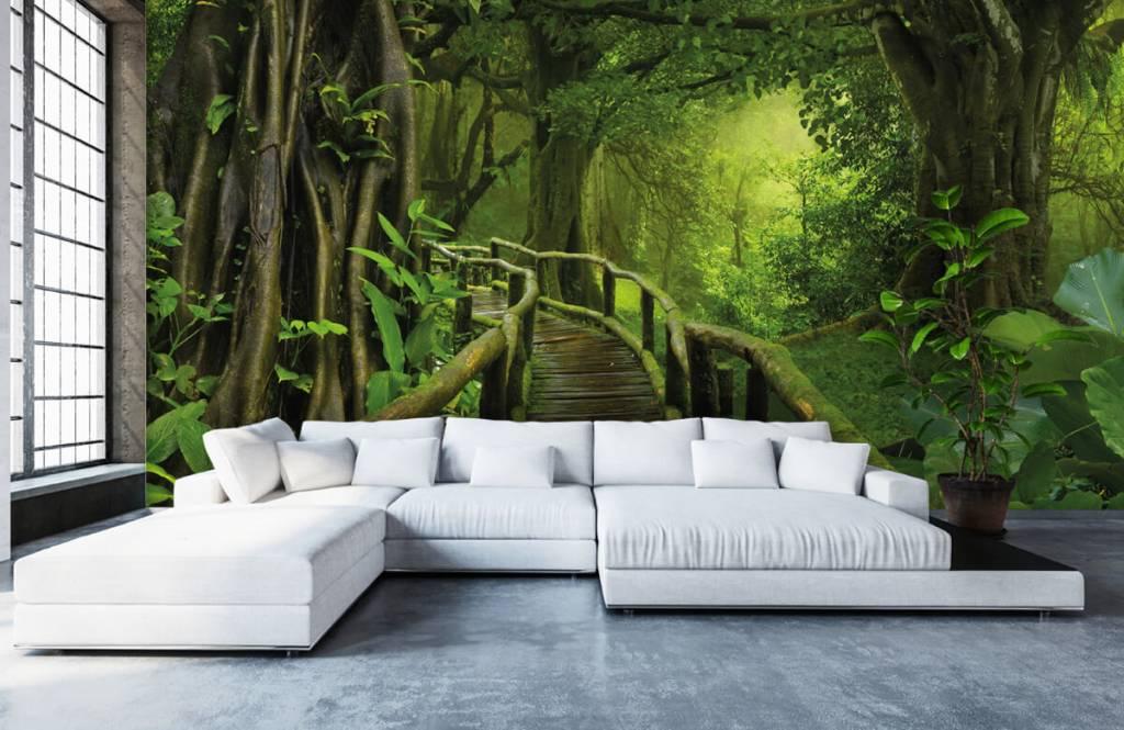 Trees - Wooden bridge through a green jungle - Bedroom 1