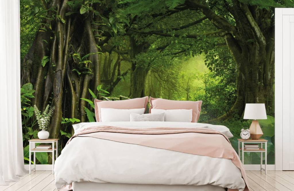 Trees - Wooden bridge through a green jungle - Bedroom 2