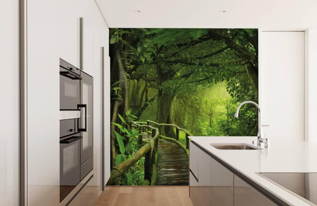 Trees - Wooden bridge through a green jungle - Bedroom 4