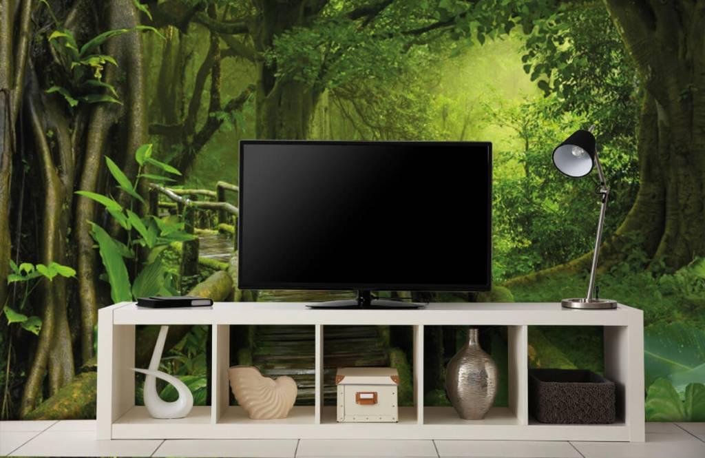 Trees - Wooden bridge through a green jungle - Bedroom 5