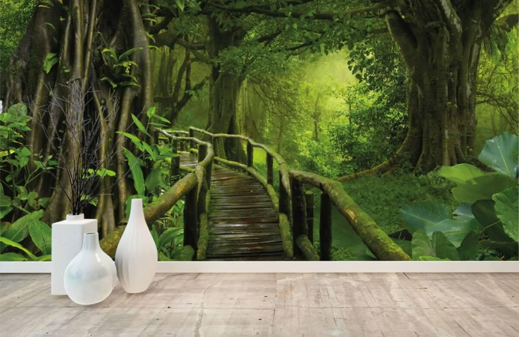 Trees - Wooden bridge through a green jungle - Bedroom 8