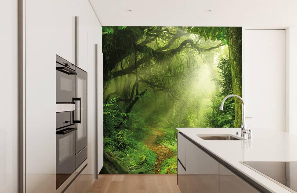 Trees - Jungle with sunbeams - Bedroom 4