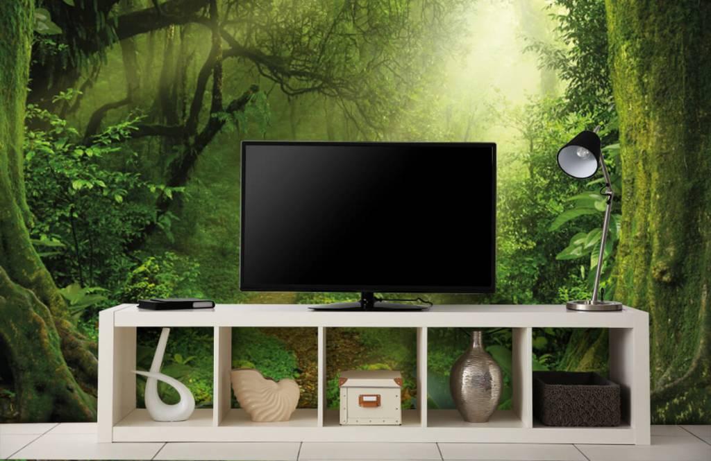 Trees - Jungle with sunbeams - Bedroom 5