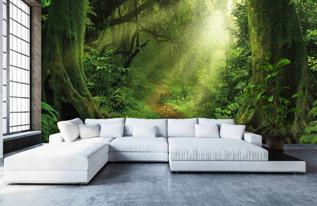 Trees - Jungle with sunbeams - Bedroom 6