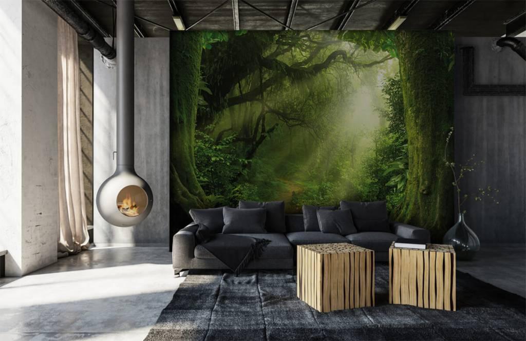 Trees - Jungle with sunbeams - Bedroom 7
