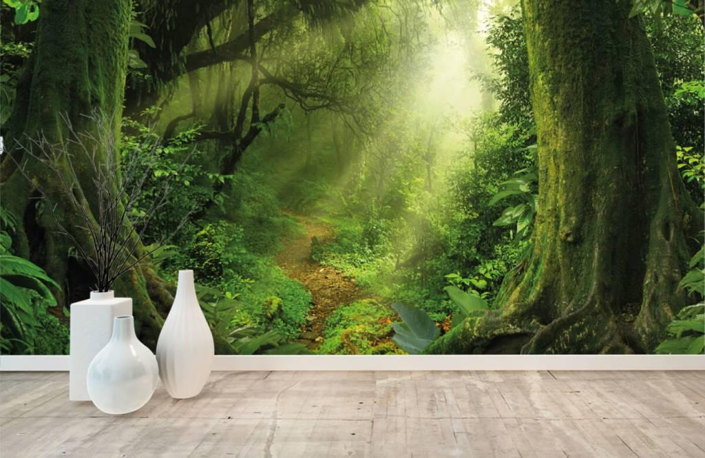 Trees - Jungle with sunbeams - Bedroom 8