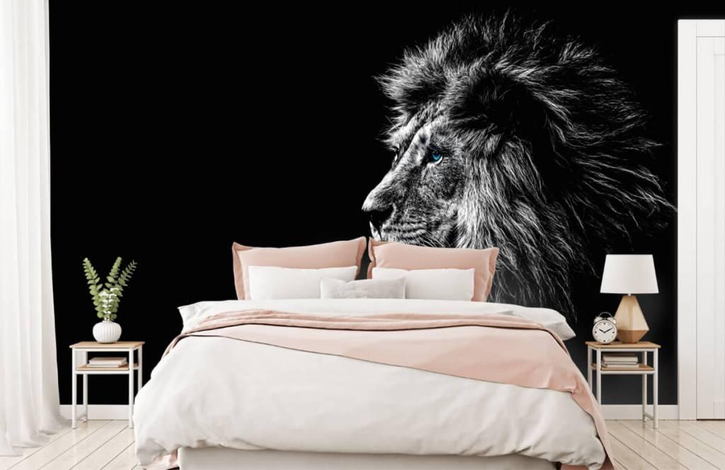 Safari Animals - Lion with blue eyes - Teenage room 2