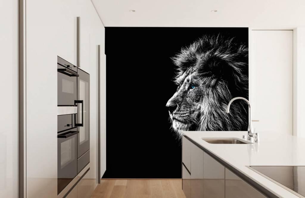 Safari Animals - Lion with blue eyes - Teenage room 4