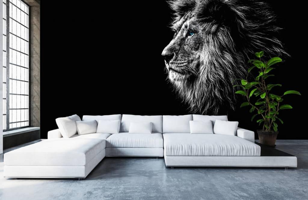 Safari Animals - Lion with blue eyes - Teenage room 6