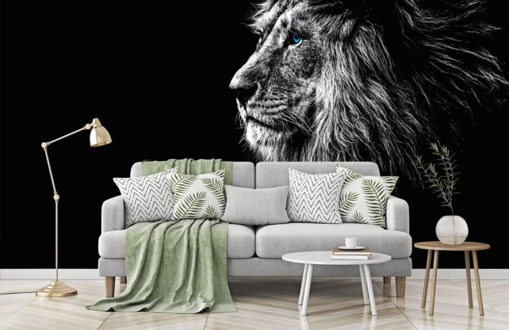 Safari Animals - Lion with blue eyes - Teenage room 7