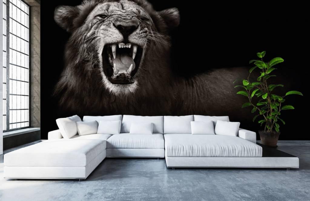 Wild Animals - Lioness - Teenage room 1