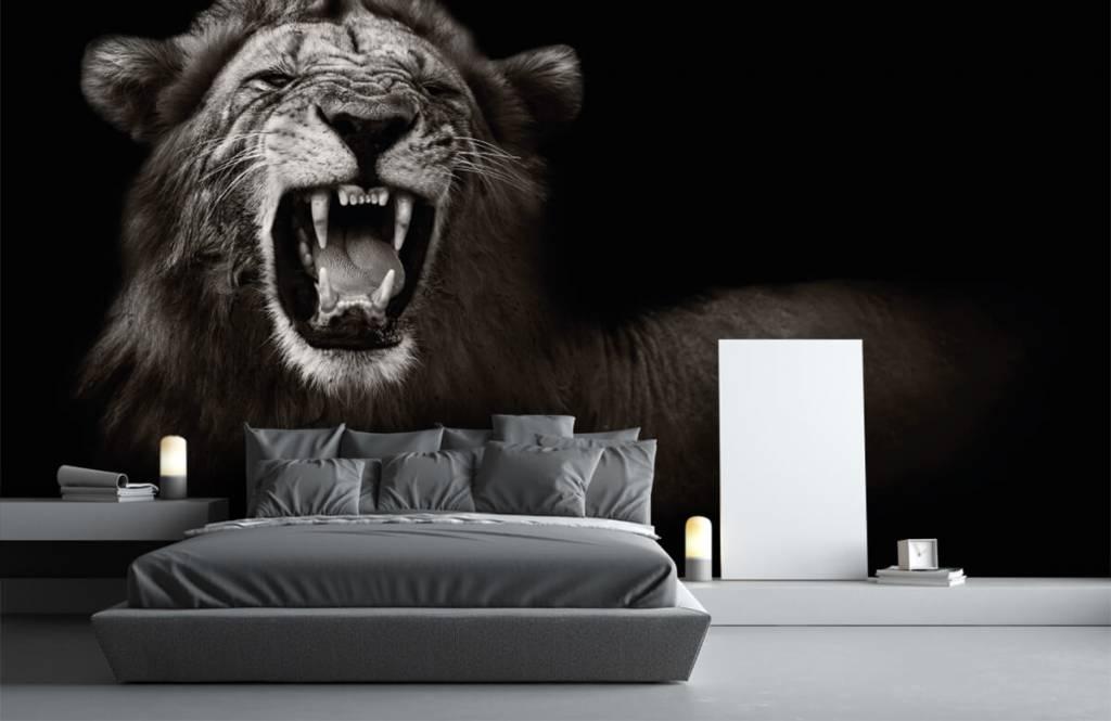 Wild Animals - Lioness - Teenage room 3