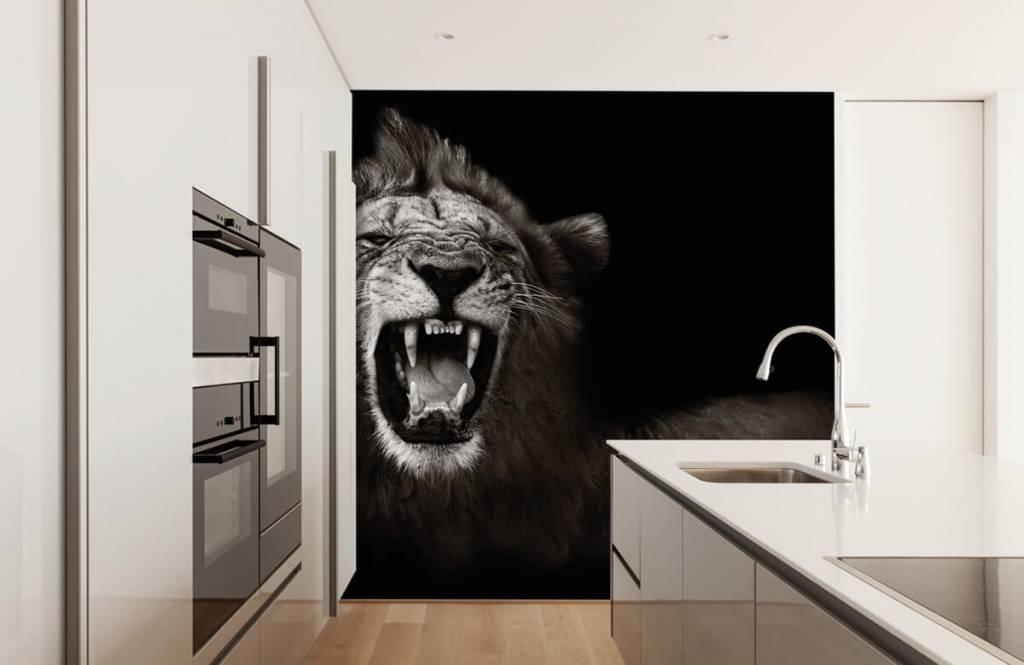 Wild Animals - Lioness - Teenage room 4