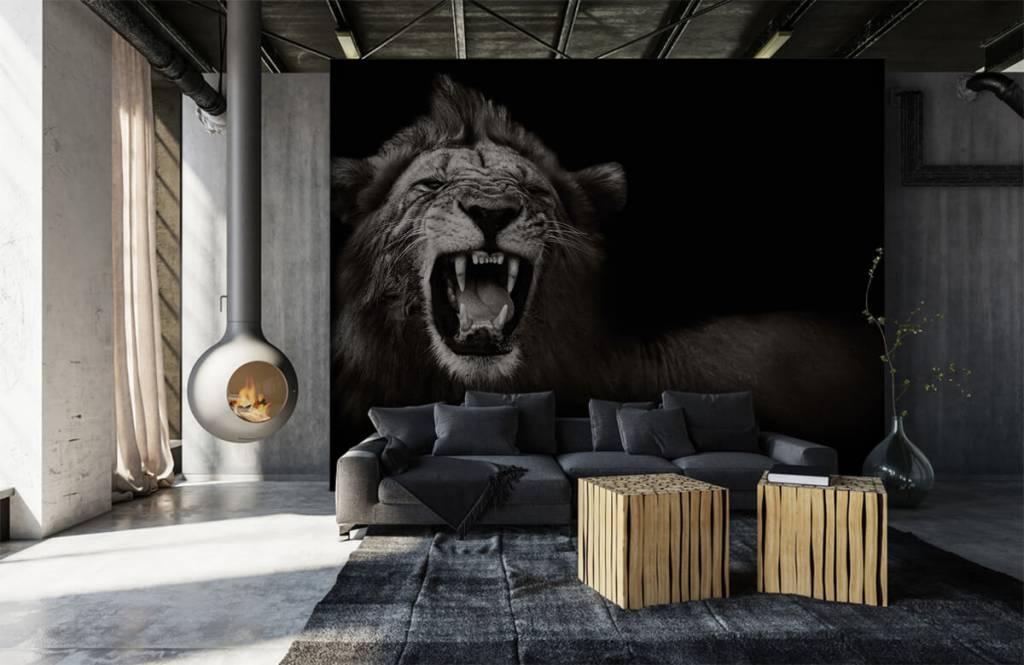 Wild Animals - Lioness - Teenage room 6
