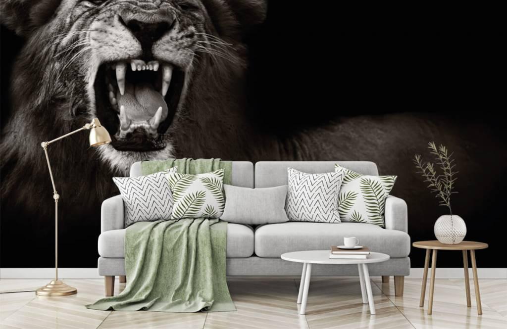 Wild Animals - Lioness - Teenage room 7