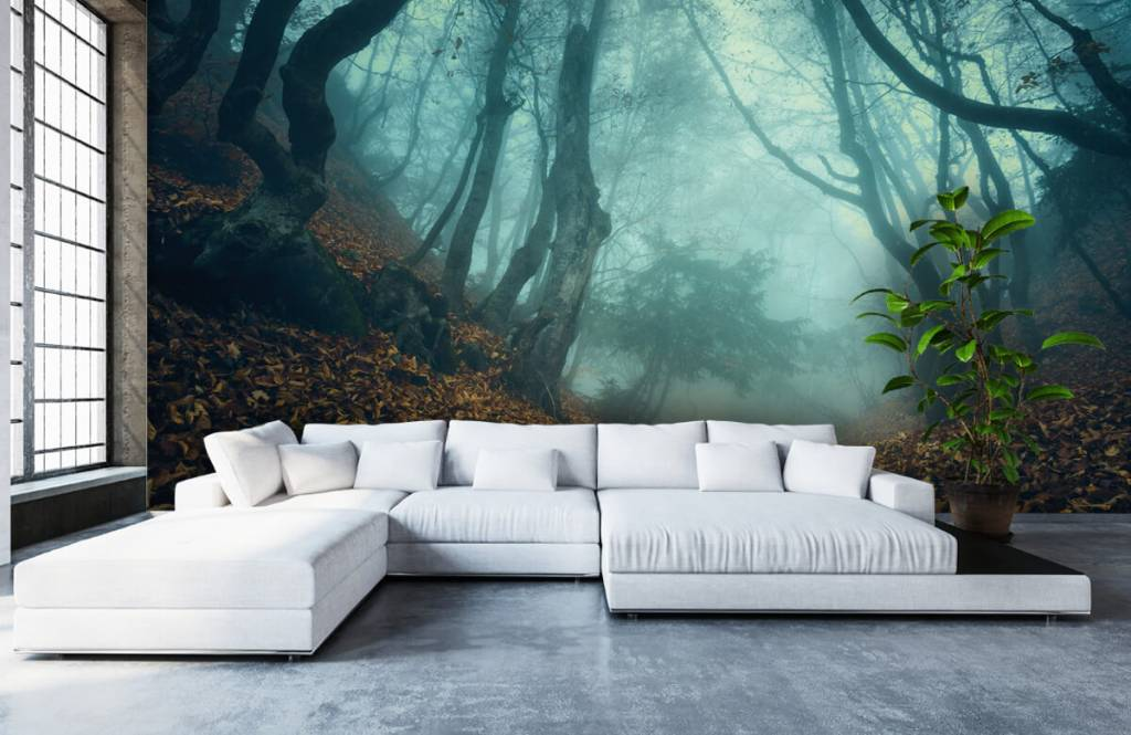 Forest wallpaper - Mysterious forest - Bedroom 1