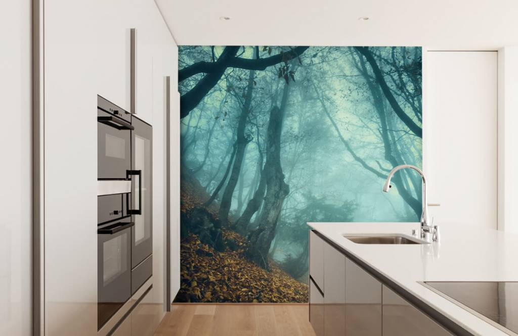 Forest wallpaper - Mysterious forest - Bedroom 4