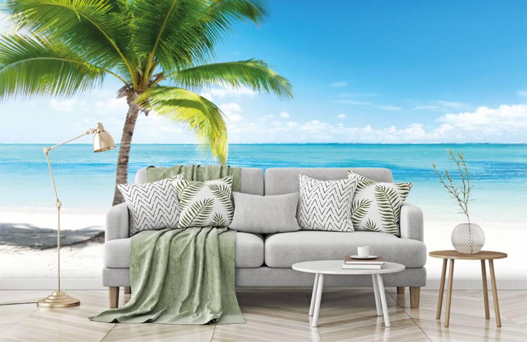 Palmtrees - Palm tree - Bedroom 1