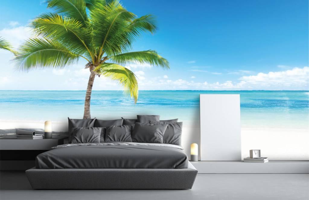 Palmtrees - Palm tree - Bedroom 3