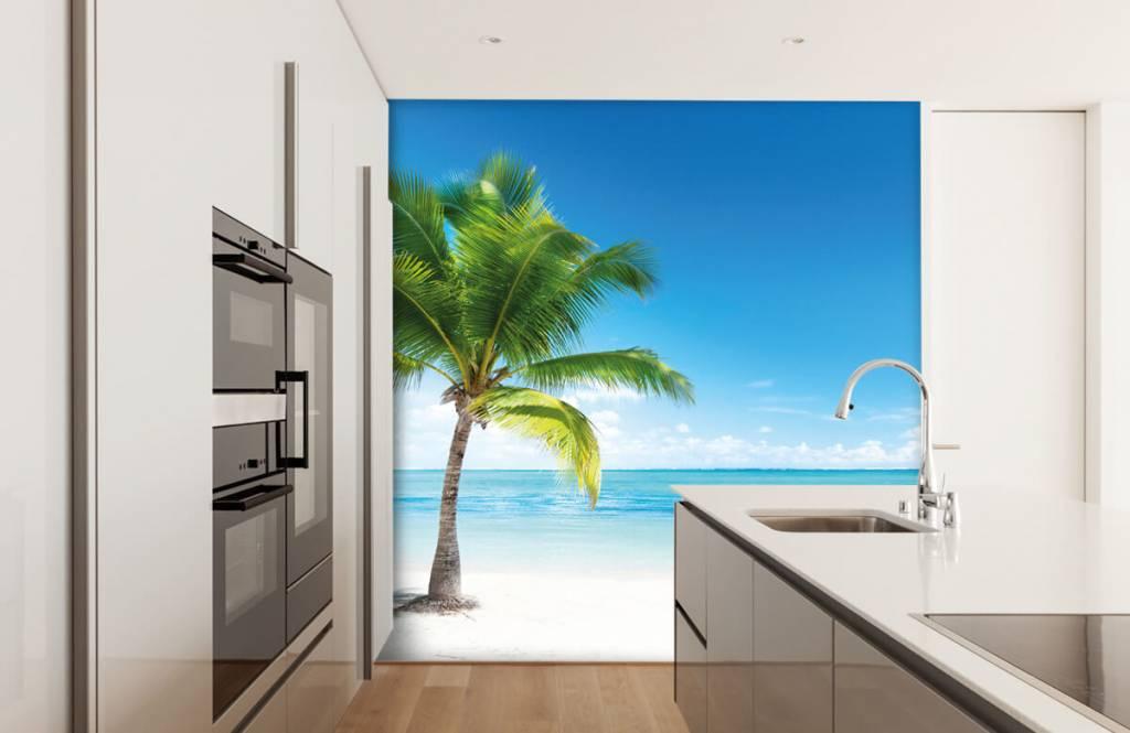 Palmtrees - Palm tree - Bedroom 4