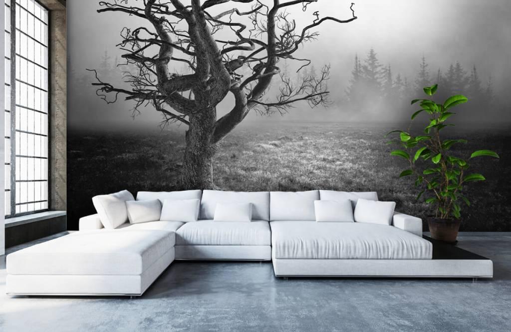 Black and white wallpaper - Elegant tree - Bedroom 1