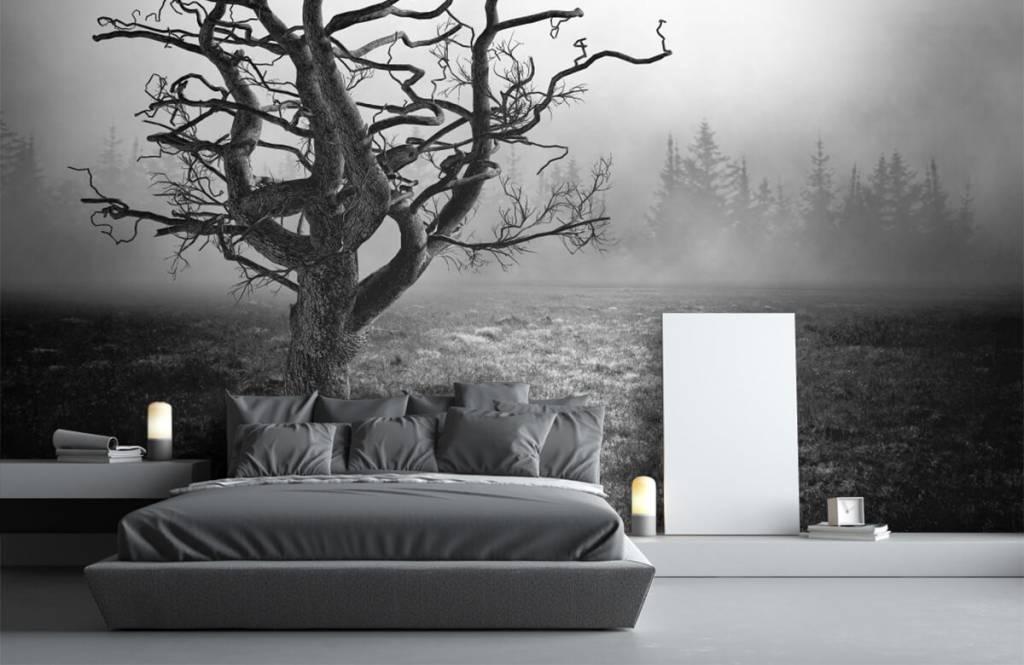 Black and white wallpaper - Elegant tree - Bedroom 3