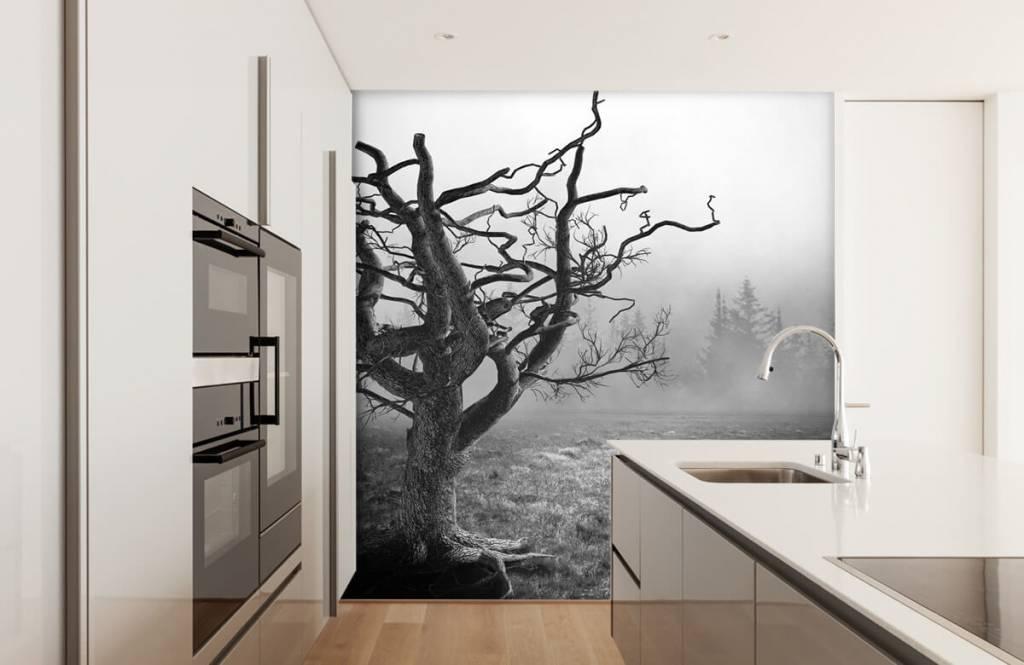 Black and white wallpaper - Elegant tree - Bedroom 4