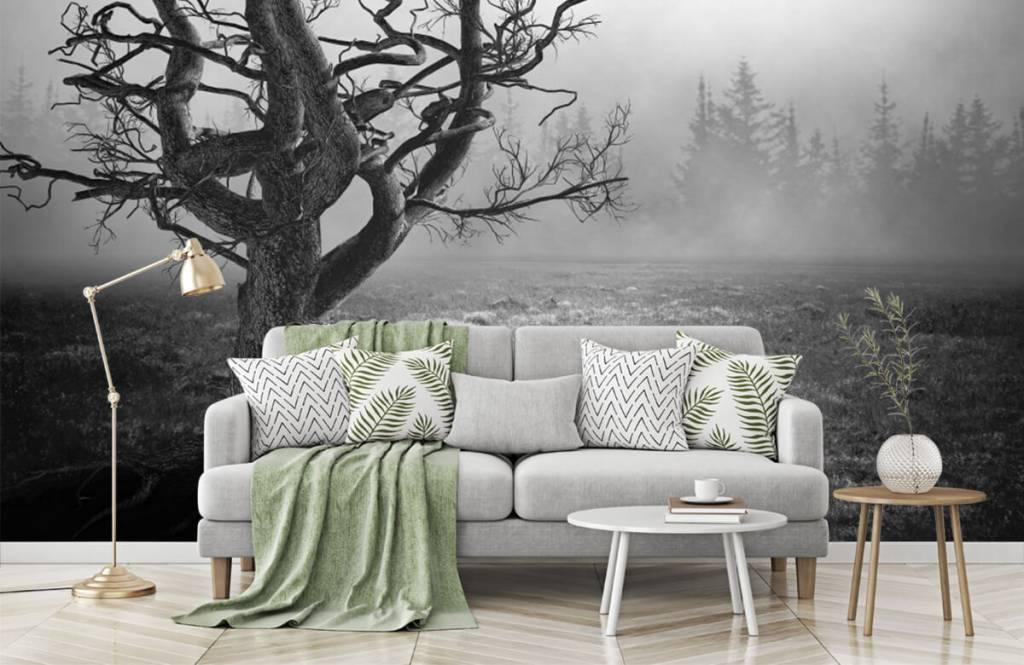 Black and white wallpaper - Elegant tree - Bedroom 7
