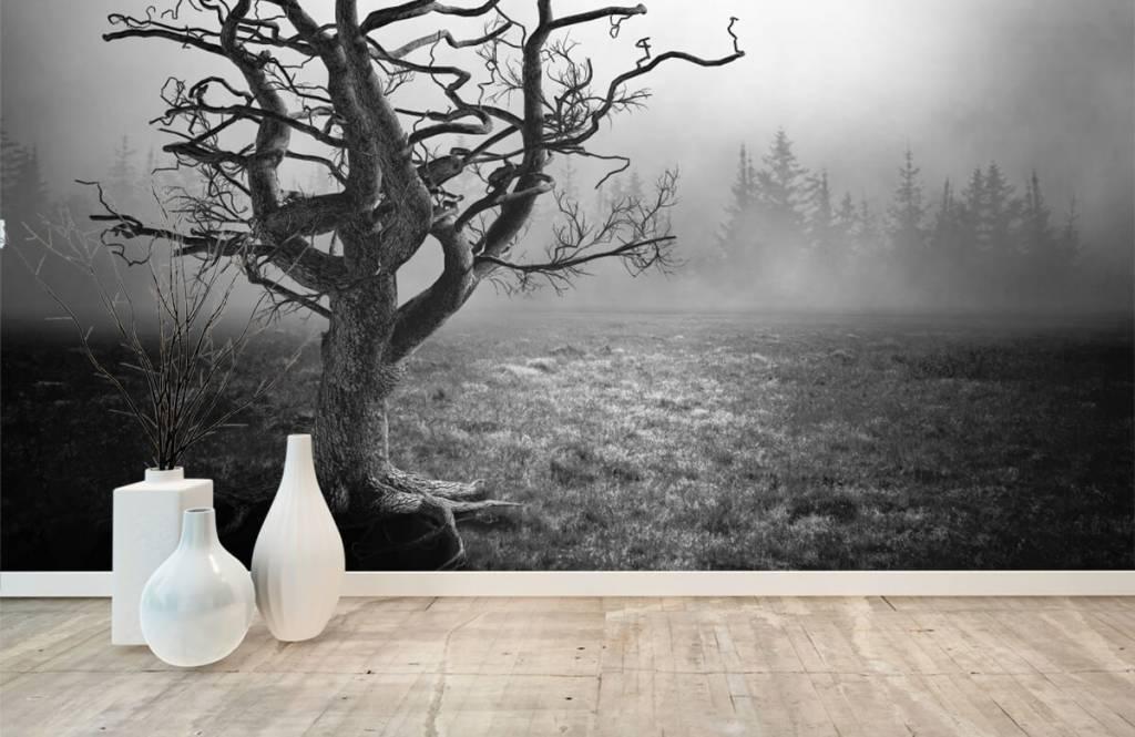 Black and white wallpaper - Elegant tree - Bedroom 8