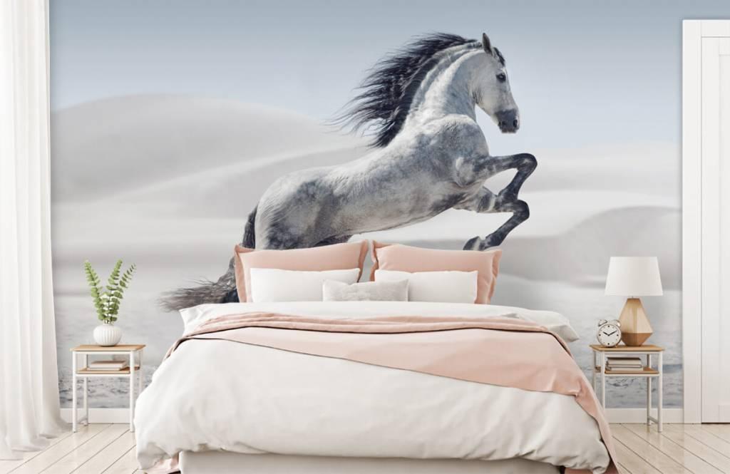 Horses - Prancing horse - Children's room 3
