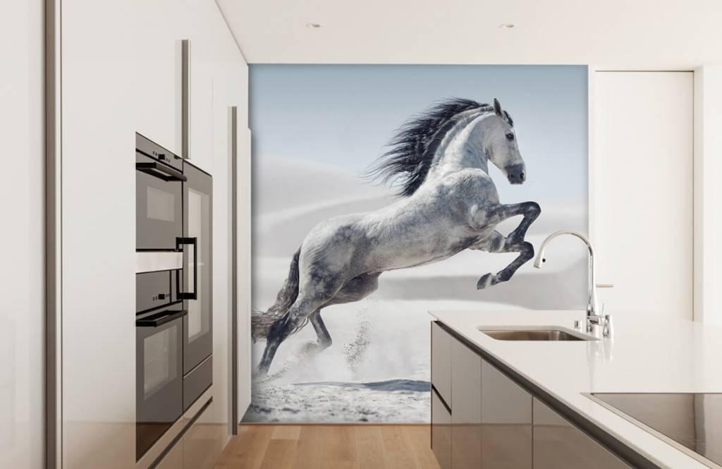 Horses - Prancing horse - Children's room 5