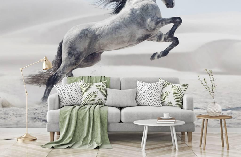 Horses - Prancing horse - Children's room 8
