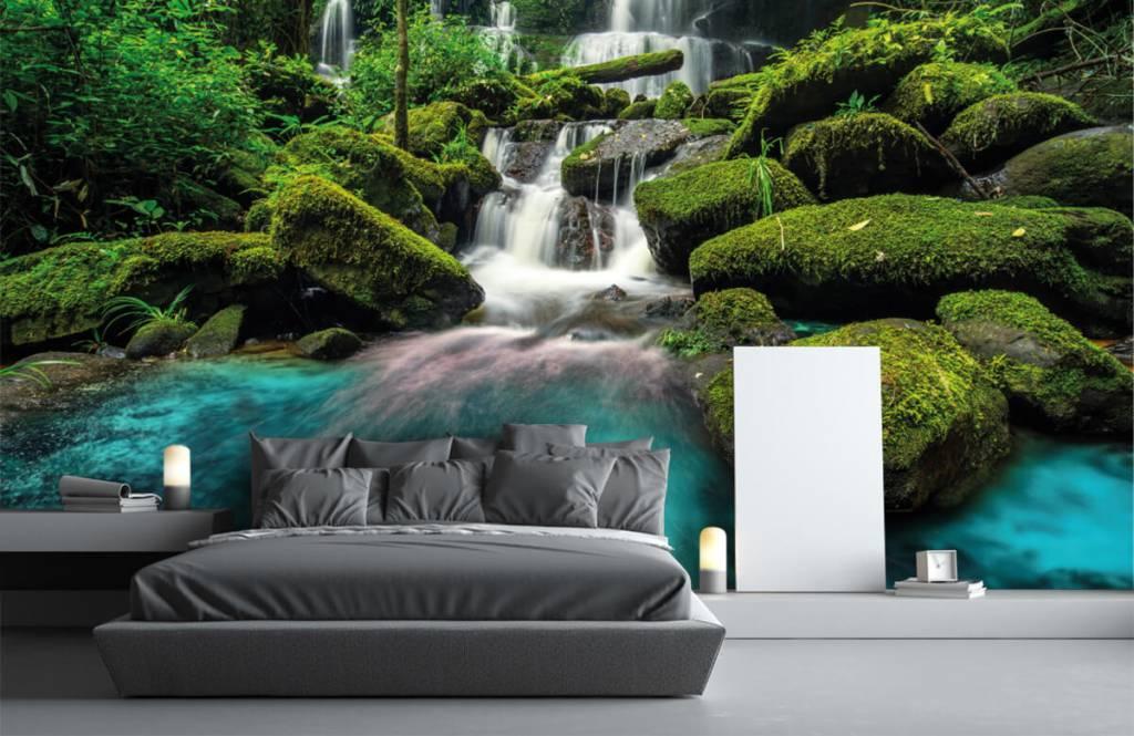 Waterfalls - Waterfall in a jungle - Hobby room 1