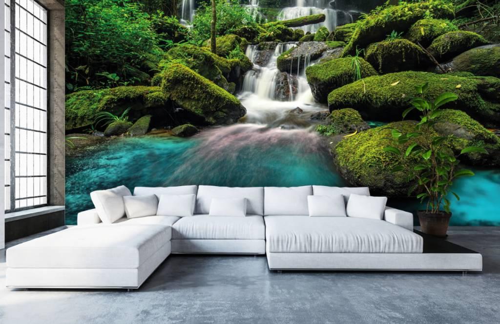 Waterfalls - Waterfall in a jungle - Hobby room 5