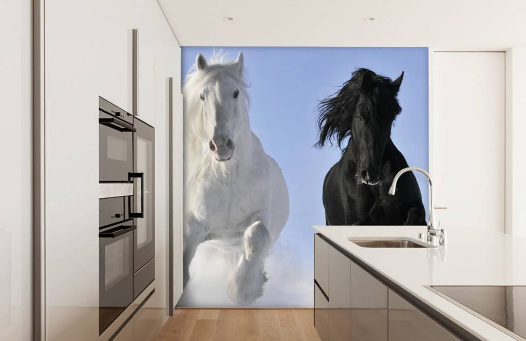 Horses - White and a black horse - Teenage room 4
