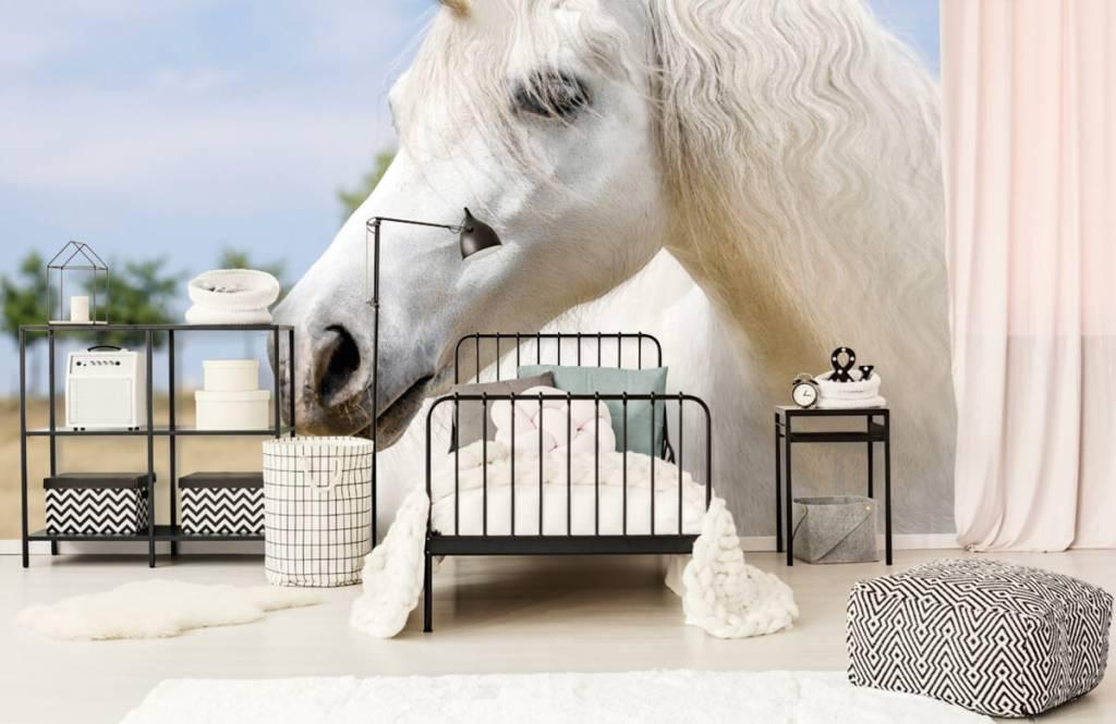 Horses - White unicorn - Children's room 2