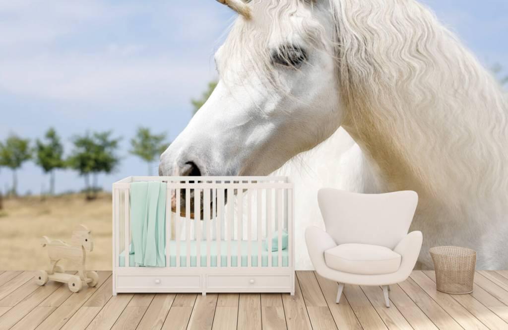 Horses - White unicorn - Children's room 5