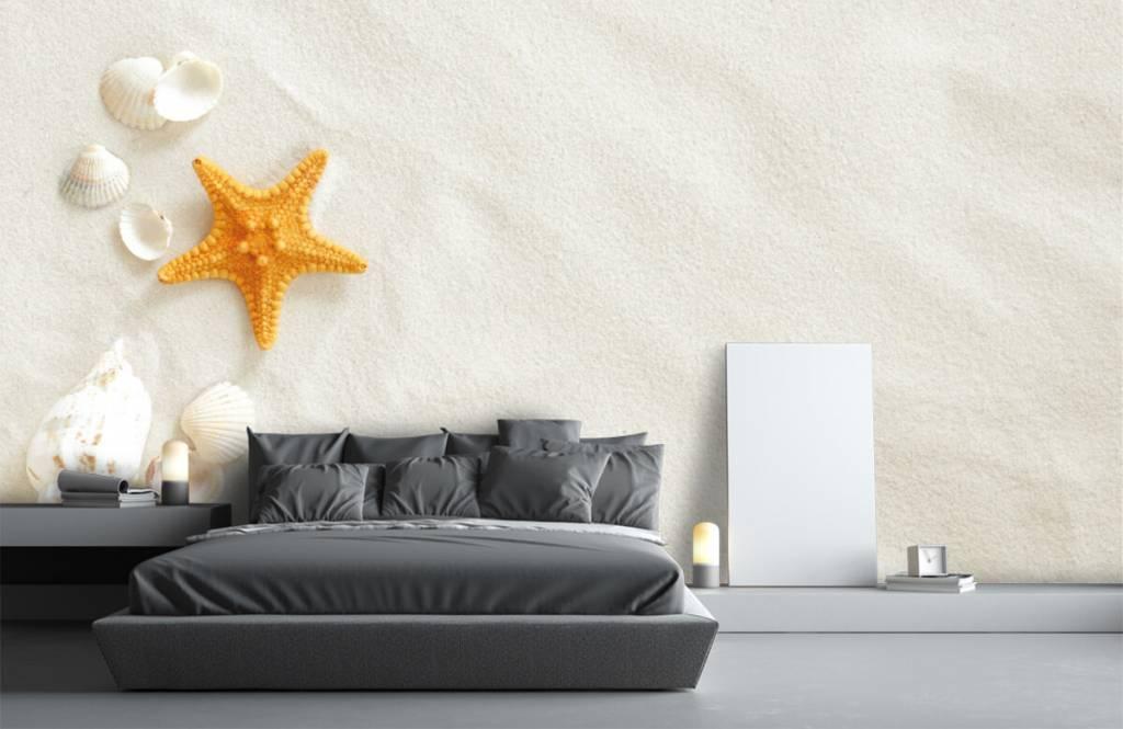 Beach wallpaper - Starfish on white sand - Bedroom 3