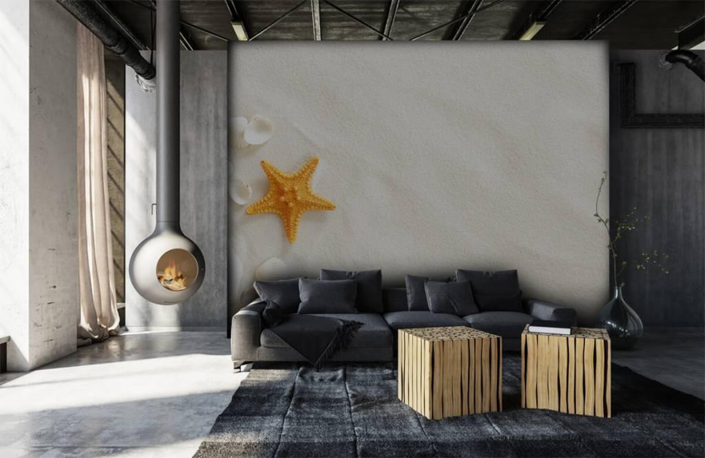 Beach wallpaper - Starfish on white sand - Bedroom 6