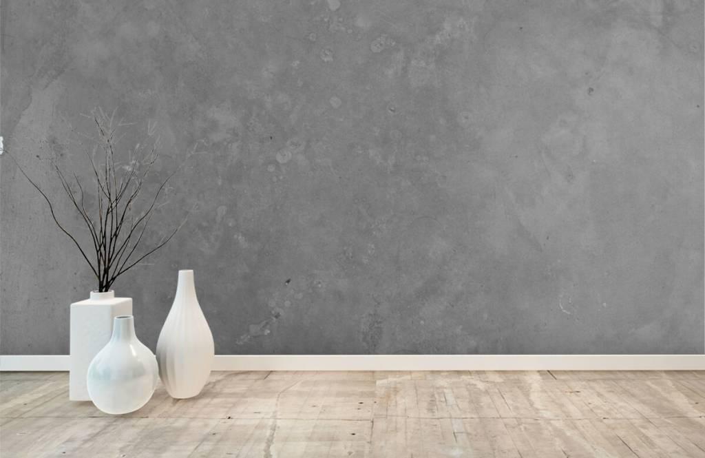 Concrete look wallpaper - Grey concrete - Conference room 8